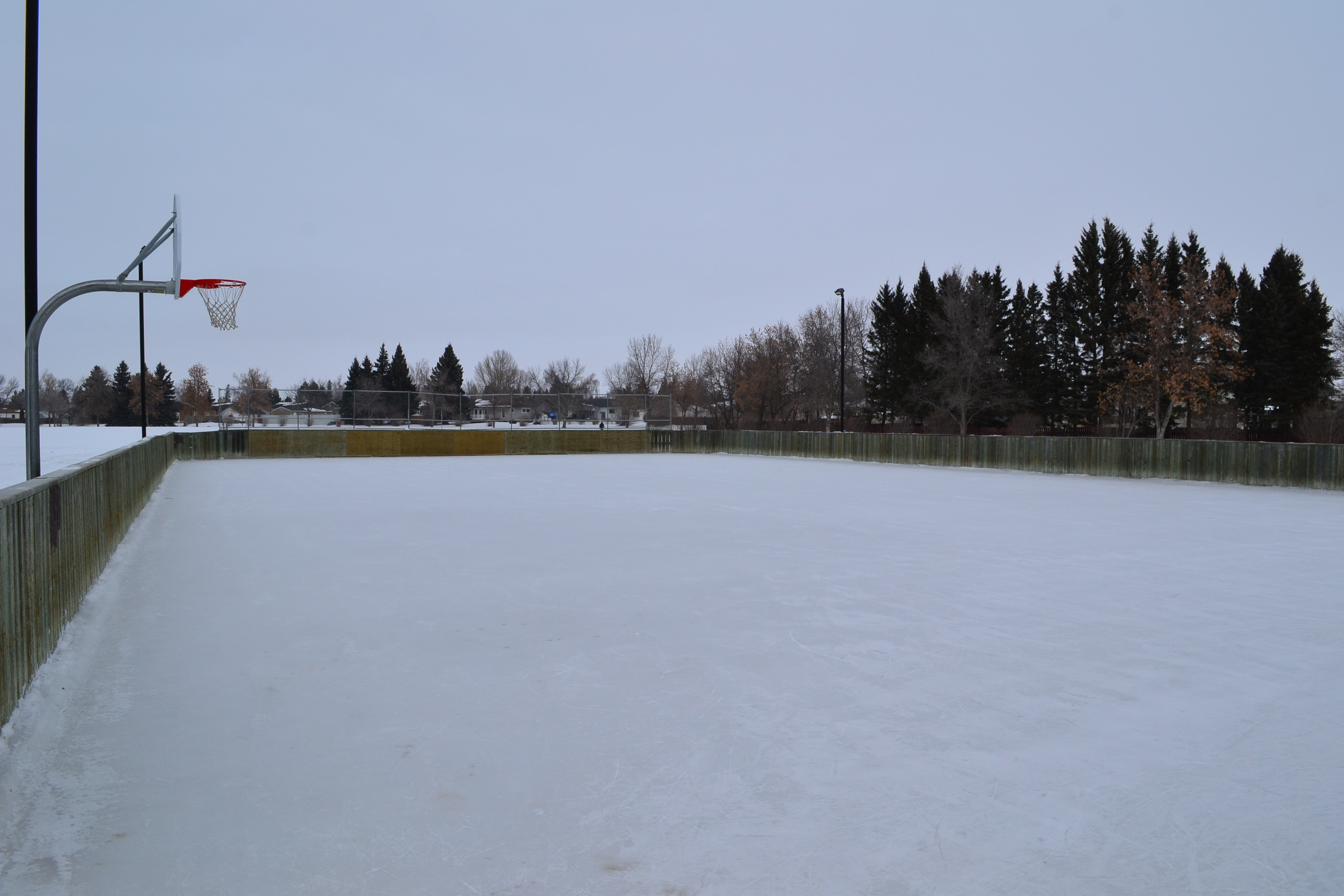 Knights of Columbus Park Outdoor Rink